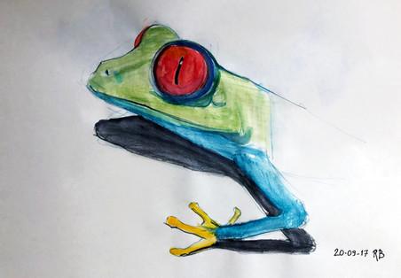 Tree frog study.jpg