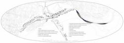 Sensorial park plan