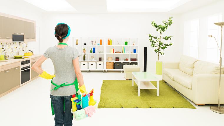 Property Care Standards