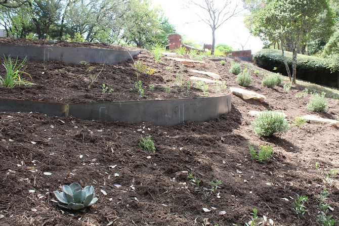 At this Rollingwood property, we created steel terracing down a steep hill to help keep soil from eroding. We also planted butterfly and bee native and adapted plants along with some herbs and fruit trees. Pathways were created with boulders down the hill to make the yard more accessible for children.
