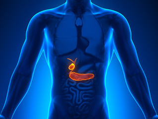 4 Tips To Maintain A Healthy Gallbladder