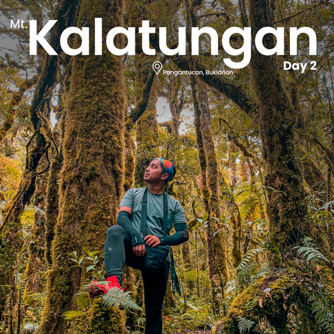 The Mossy Forest and Reaching the Peak of Mt. Kalatungan (Day 2)