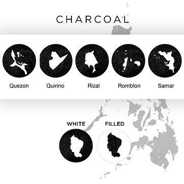 Mockup CHARCOAL.jpg