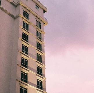Lush skies 🌌_-_-_-_-_-_#FilmNeverDie #F