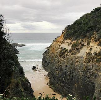 Tasmania 🍃_-_-_-_-_-_#fitzroy #brunswic