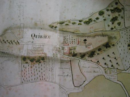 Le toilettage du site de Quirieu