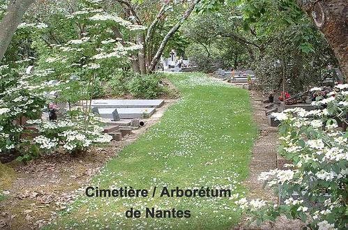 Cimeti%C3%83%C2%A8res_Nantes_edited.jpg