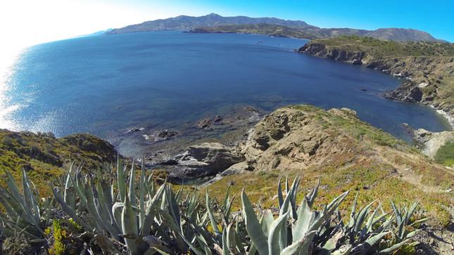 Une sortie en mer autrement sur la côte catalane catamaran lodos port de saint cyprien