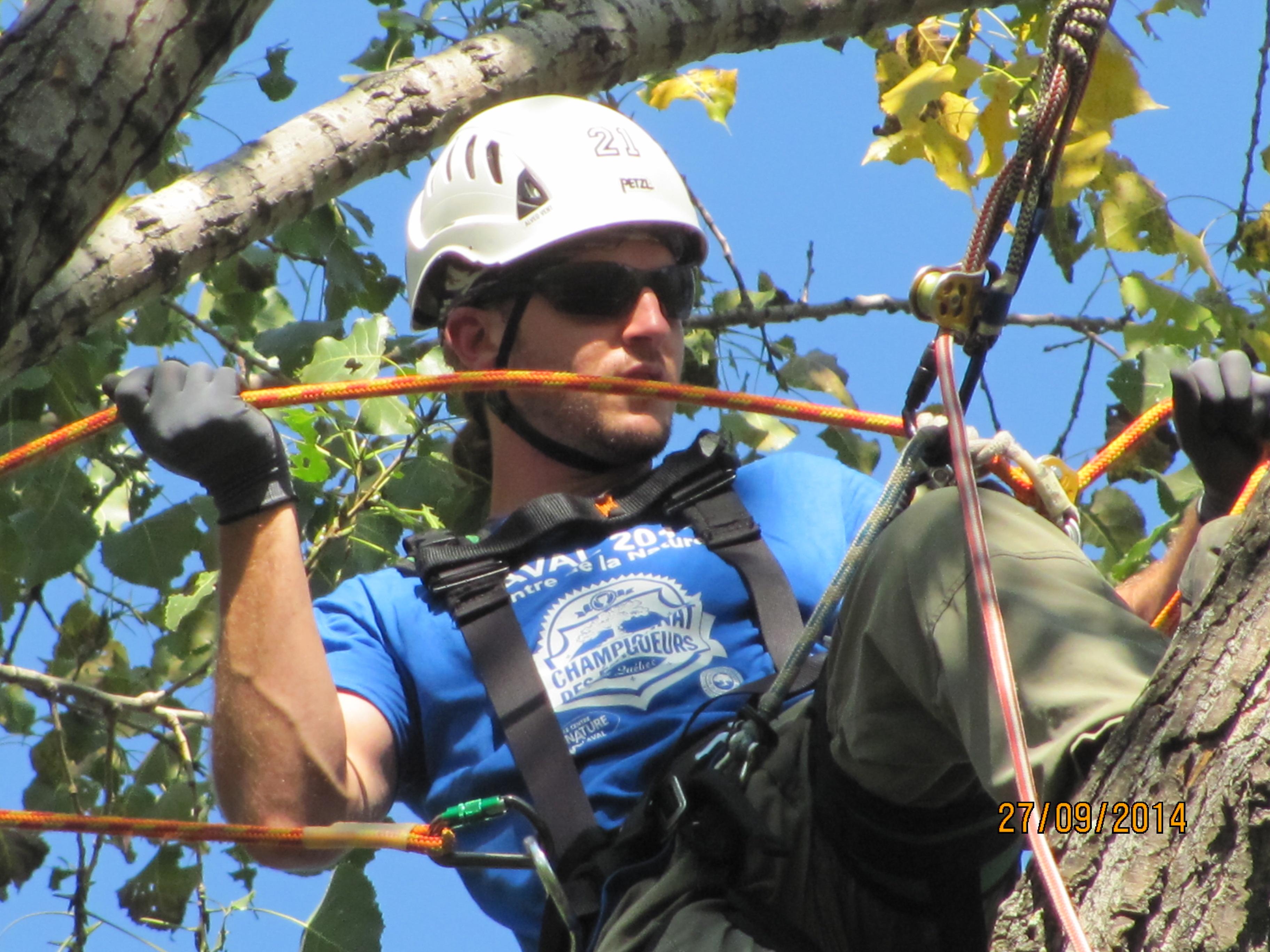 Arboriculteur Rawdon