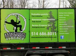 Ascension Arboriculture Élagage