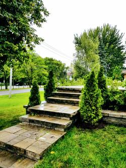 Plantation arbre Lanaudière