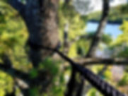 Haubanage_arbre_brisé_Rawdon.jpg