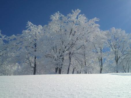 年末年始スノーボードレッスン