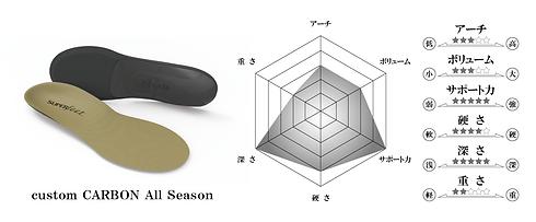custom-carbon-all-season.png