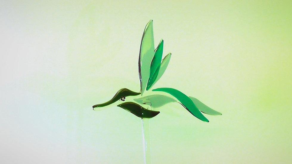 Glasfågel i grönt