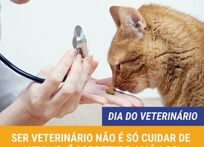 Dia do Veterinário: dia de agradecer aos profissionais que cuidam dos animais com tanto amor