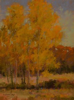 October Birch