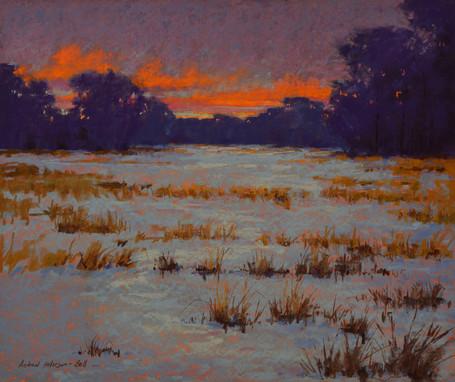 Winter Marshscape #1