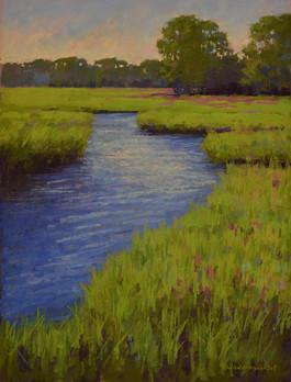 Marsh Loosestrife #13