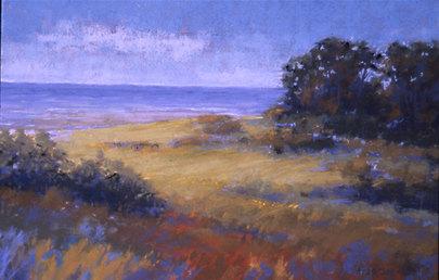 Dune Vegetation in Summer