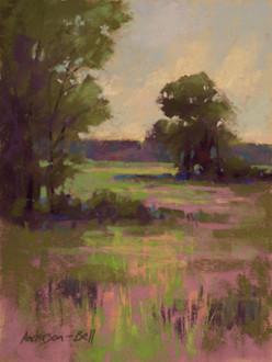 Summer Marsh #2