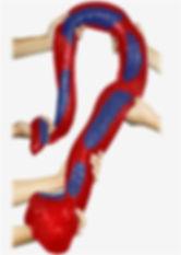 pythonCherryBlue_499.1.jpg