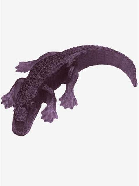 Gummy Gator (Grape)