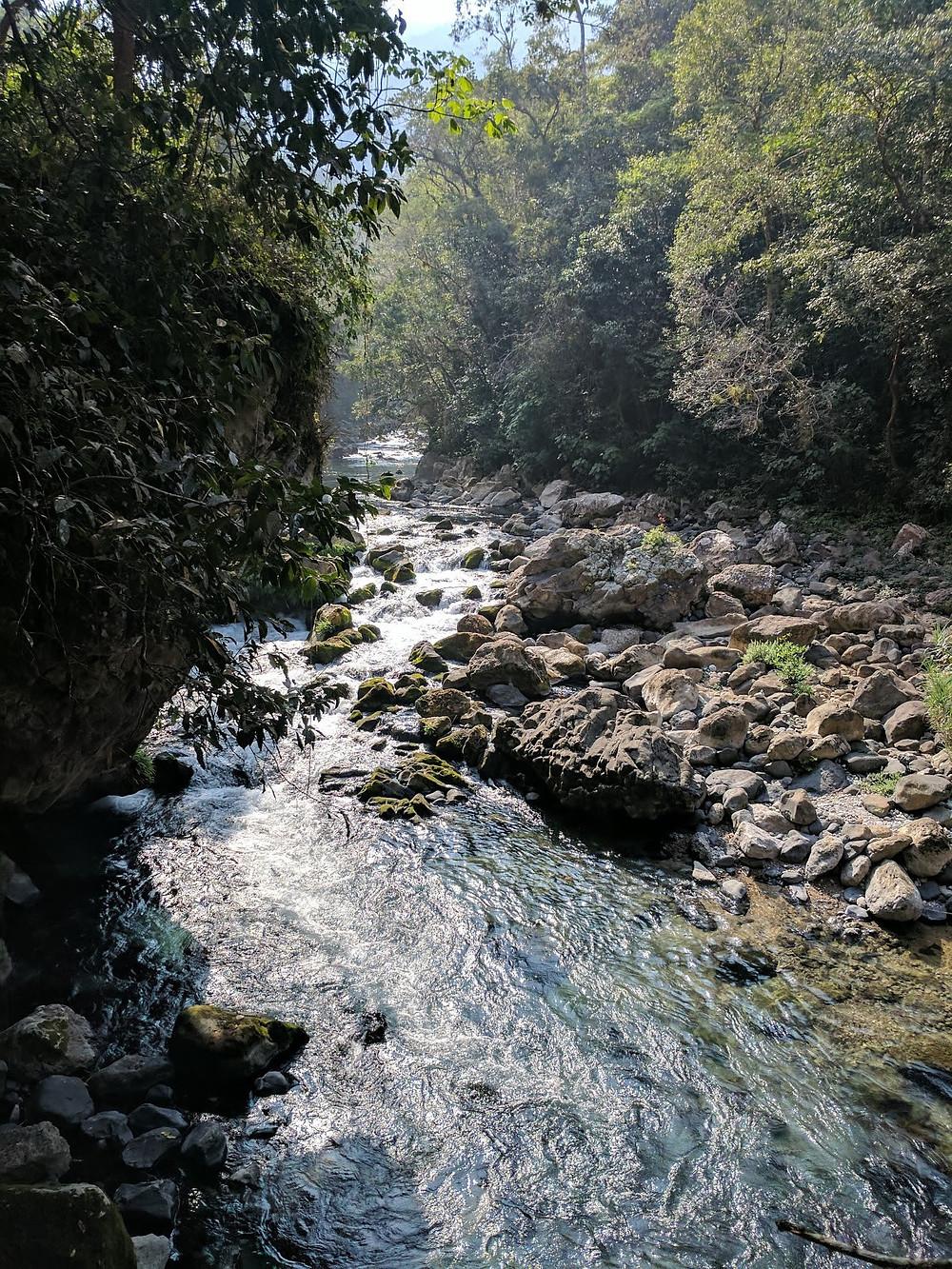 Tamasopo, San Luis Potosi Mexico river forest