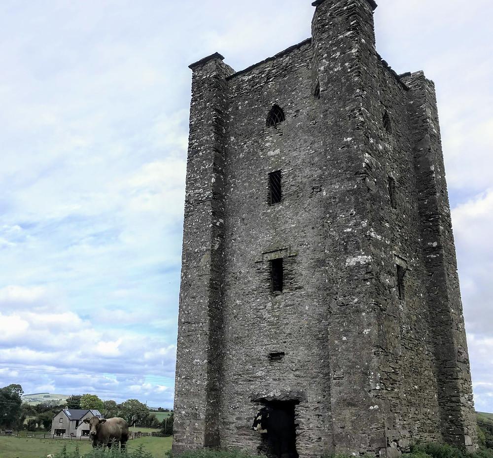 Tower house County Cork Ireland Lissarda