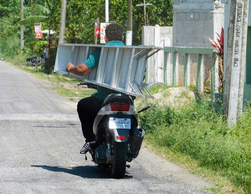 man carrying a ladder on a motorbike in mexico