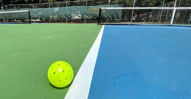 Ball Just Out on Sunrise Park Court.JPG
