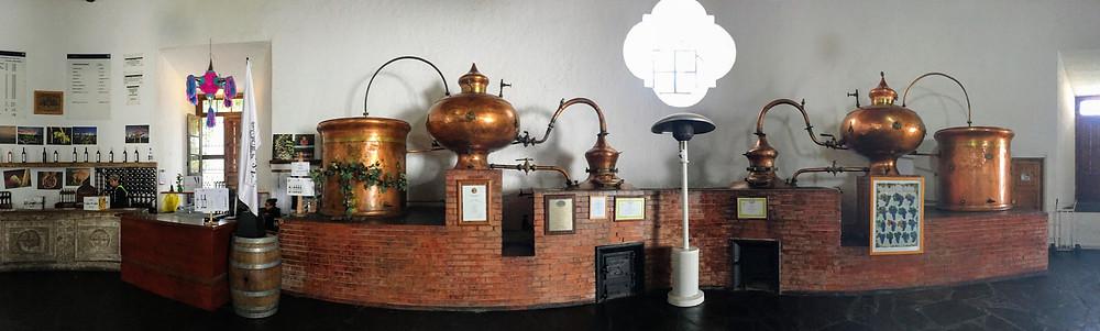 Casa Madero, sales room at the winery, Coahuila, Mexico