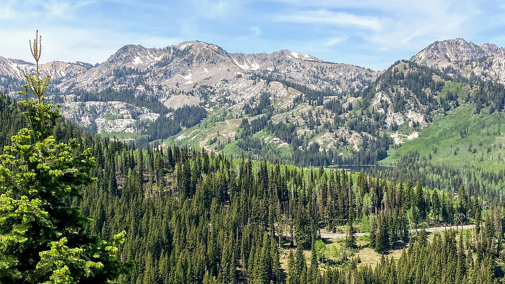 Beautiful Wasatch mountain view from Guardsman pass road Utah