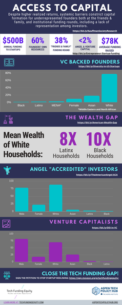 Access to Capital Infographic