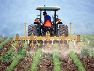 Agriculture and Agribusiness to Drive Industrialization in Africa