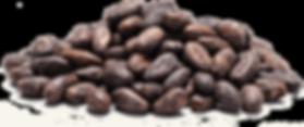 Cocoa beans transparent.png