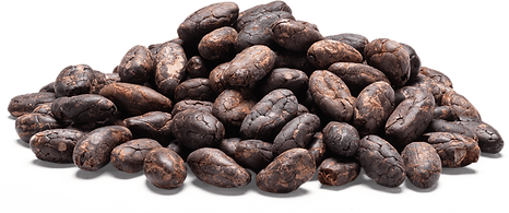 Cocoa beans transparent.png