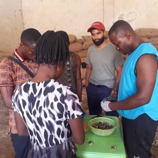 Checking Quality of Farmer Produce - KDHI