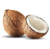 Mature Coconut 3 KDHI.png