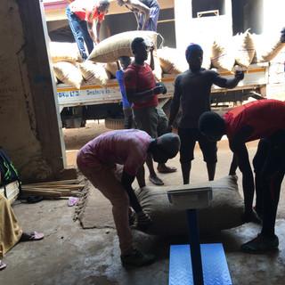 Data-driven Weighing of Raw Cashew Nuts - KDHI
