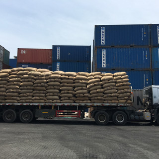 Loading Raw Cashew Nuts from Trucks to Containers