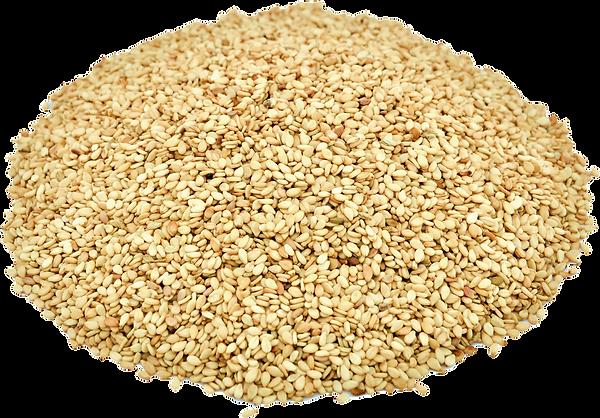 Sesame Seed Transparent 5.png