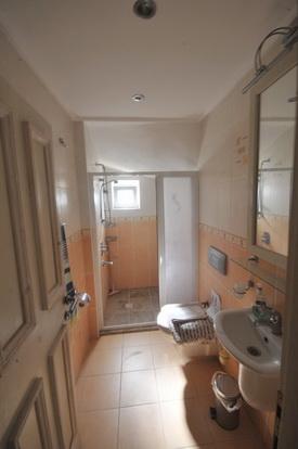 Bathroom One, Living Level