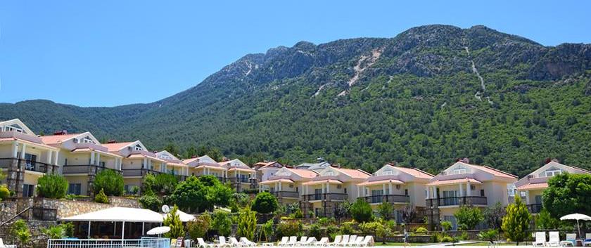 Fabulous Mountain Backdrops