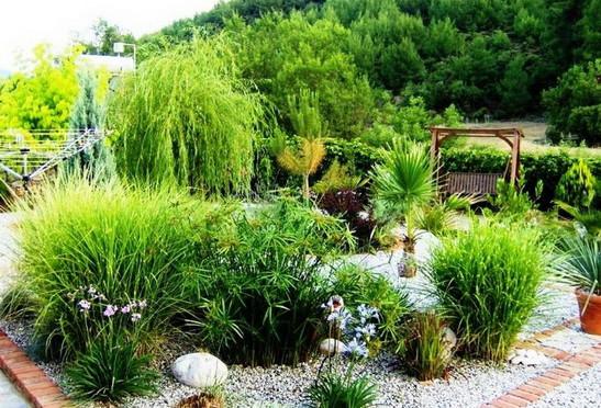 6. landcspaed gardens opp jacuzzi_resize