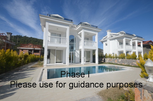 5. phase I completed for guidance_resize