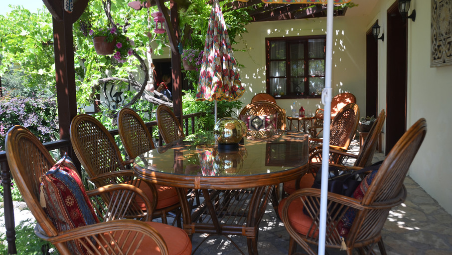 Alfresco Dining under Grape Vines
