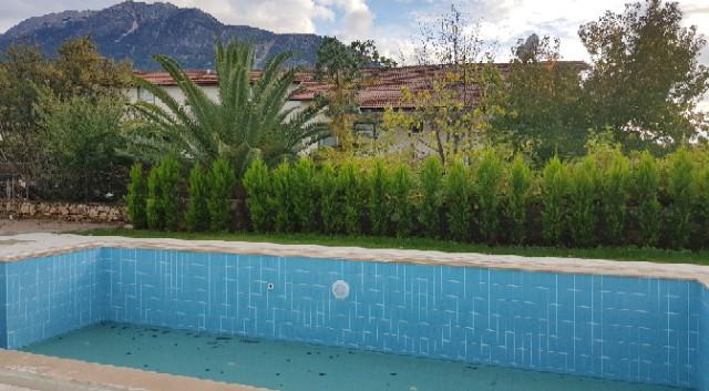 Pool (taken in winter)