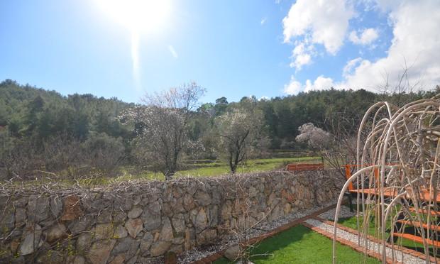 10. views beyond the bungalow gardens_re