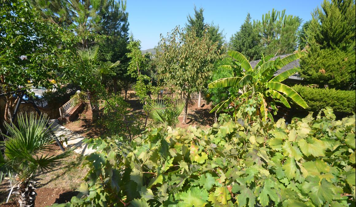 Lush gardens.JPG